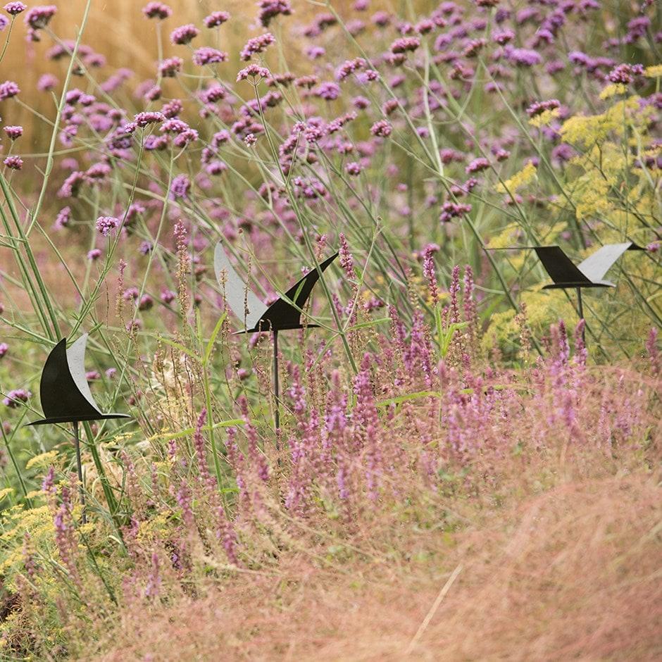 Silhouette flying bird