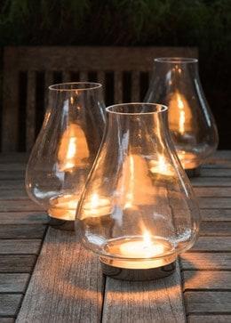Tulip hurricane lantern