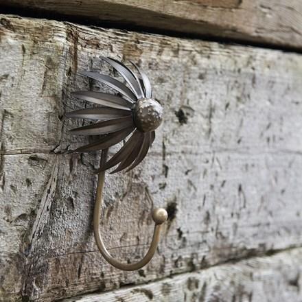 Echinacea plant hook