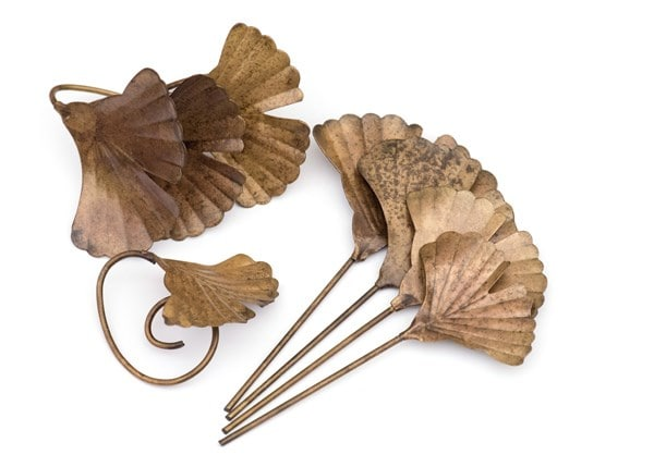 Ginkgo leaf plant markers