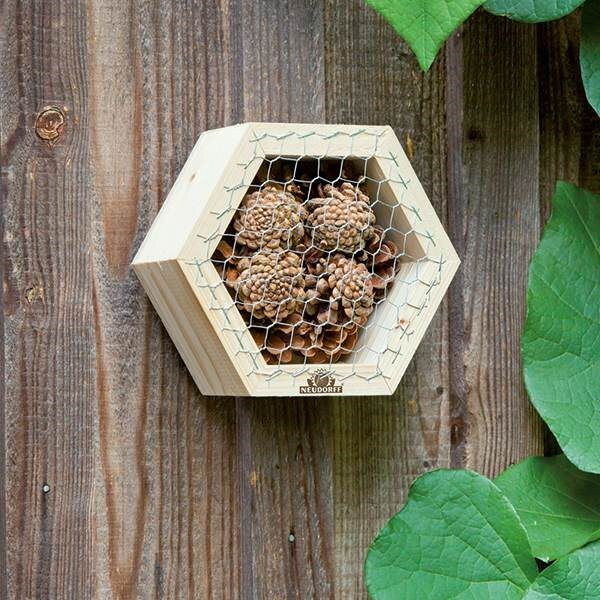 Hexagonal insect boxes