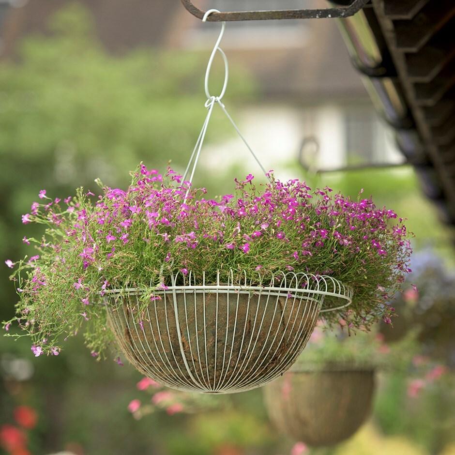 Wide hanging basket