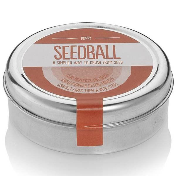 Seedballs poppies