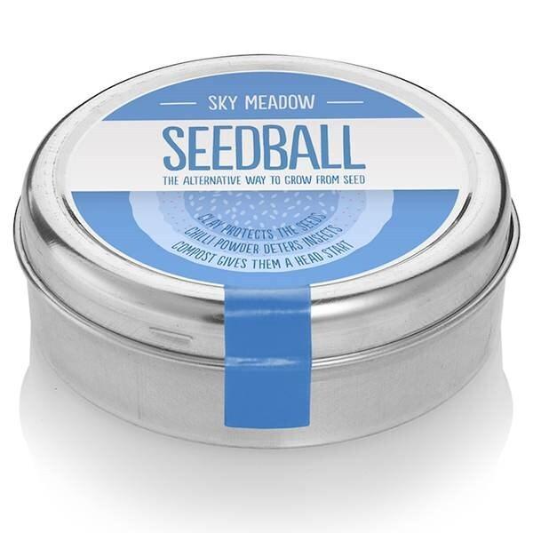 Seedballs blue meadow