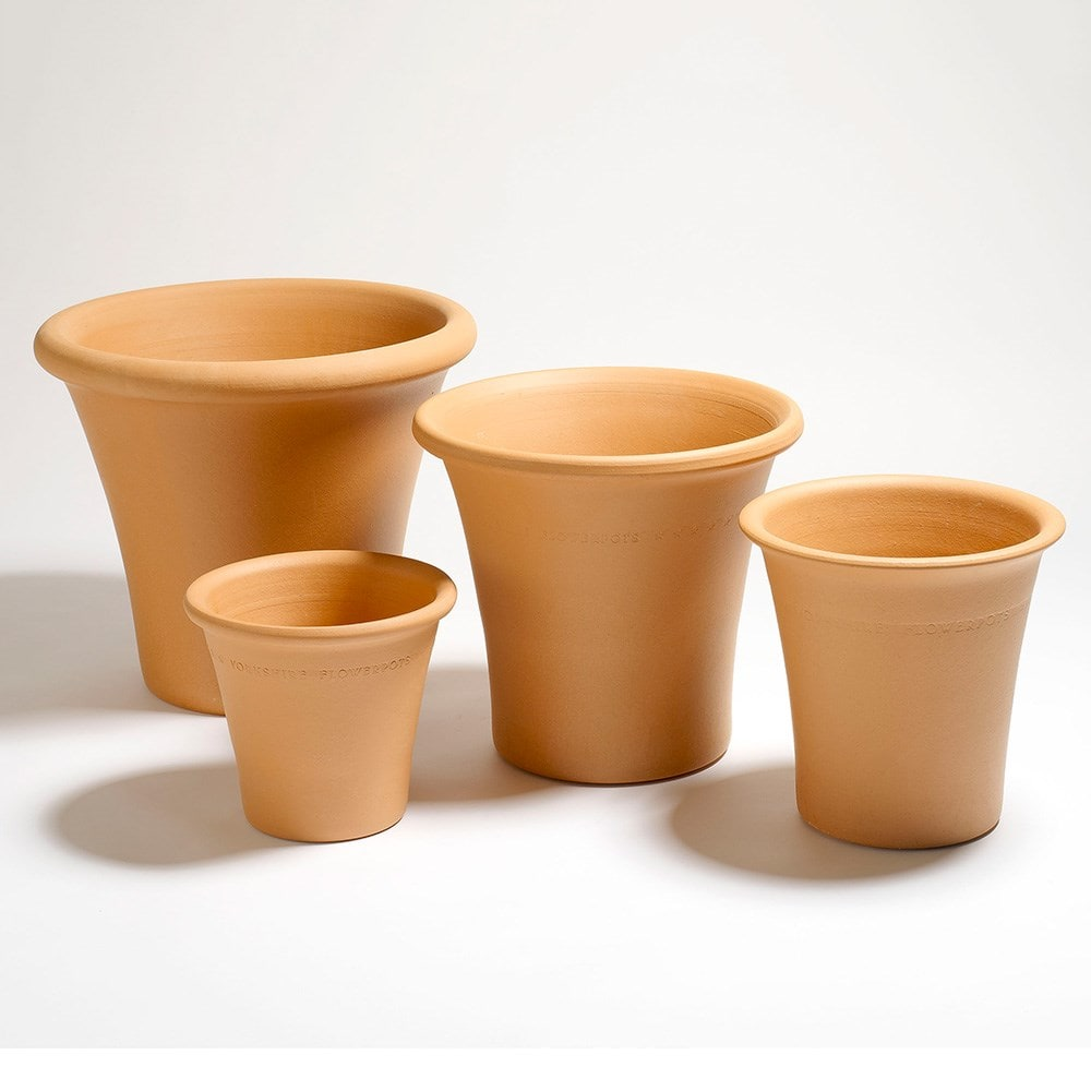 Crocus & Yorkshire terracotta flower pot