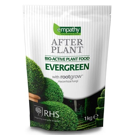 Empathy after plant evergreen