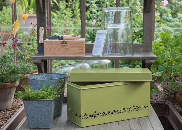 Perforated calendar seed trunk