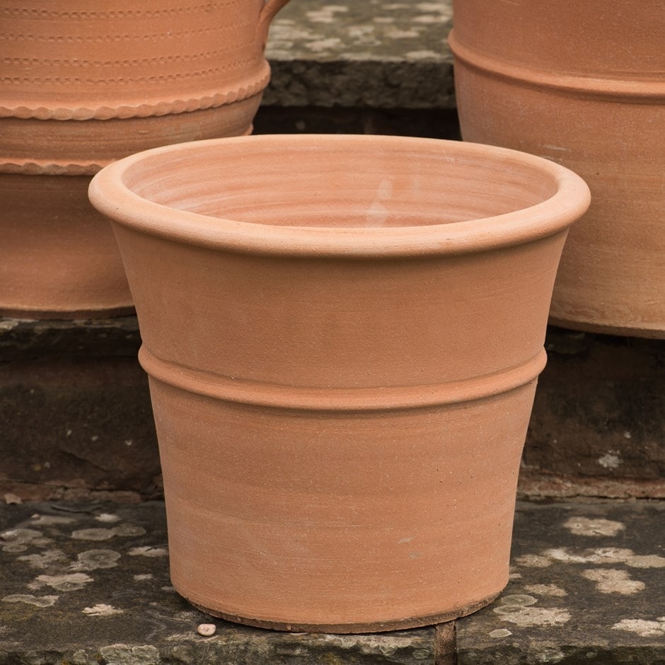 Buy Monachou Terracotta Pot Delivery By Crocus