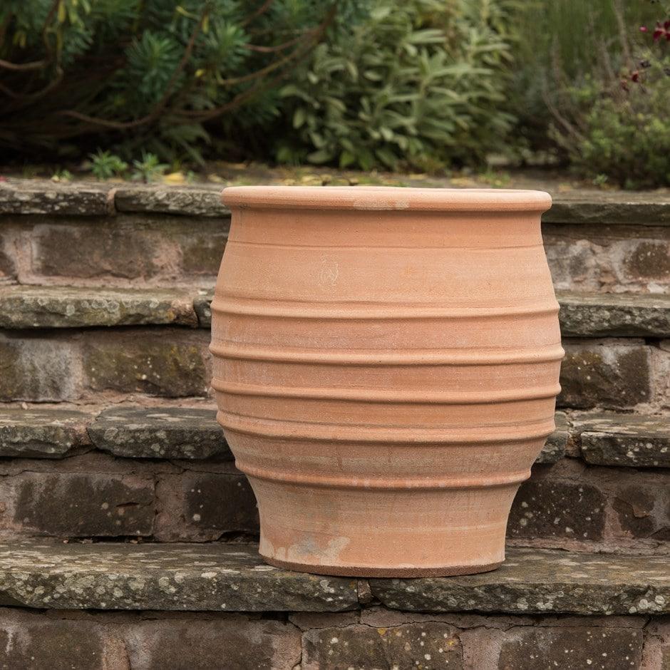 Buy Fraska Terracotta Pot Delivery By Crocus