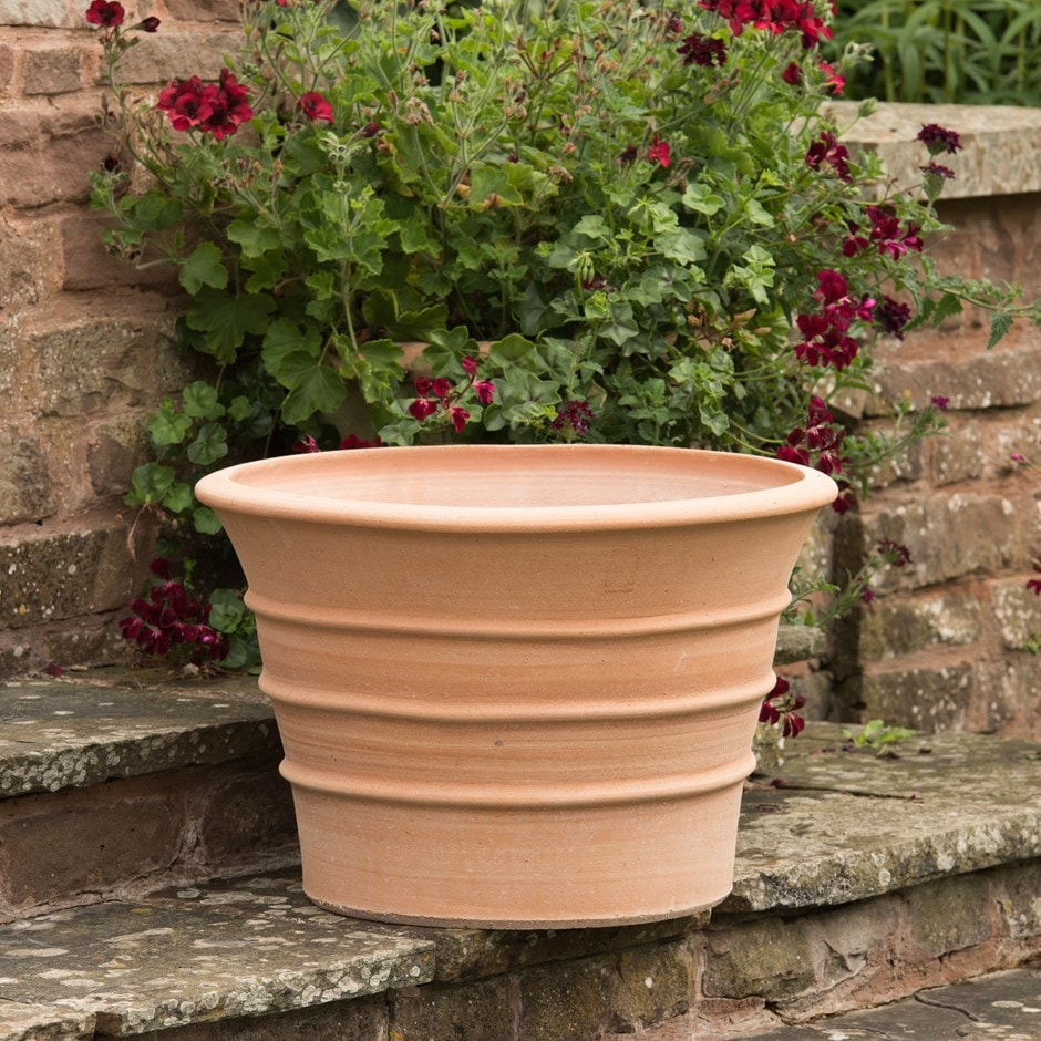 Buy Monachou Fardipati Terracotta Pot Delivery By Crocus