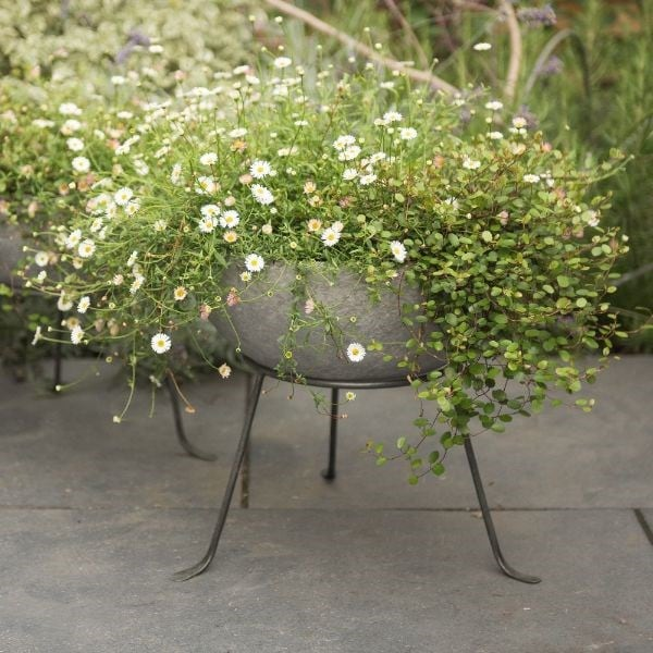 Sphere planter with stand