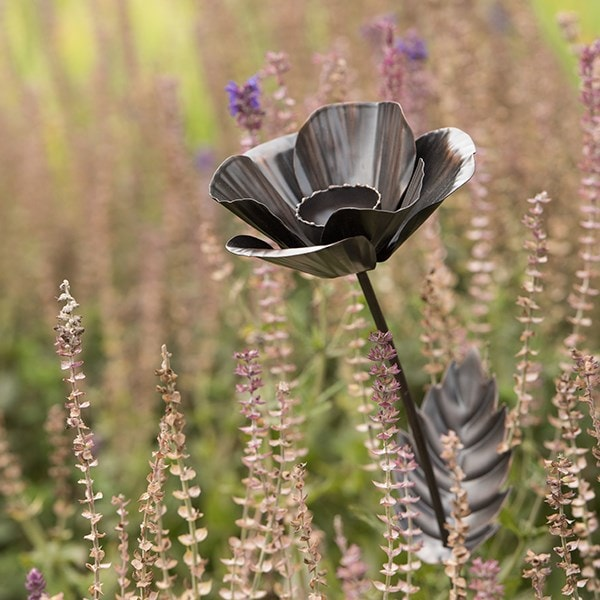 Buy Poppy Flower Stake Delivery By Crocus