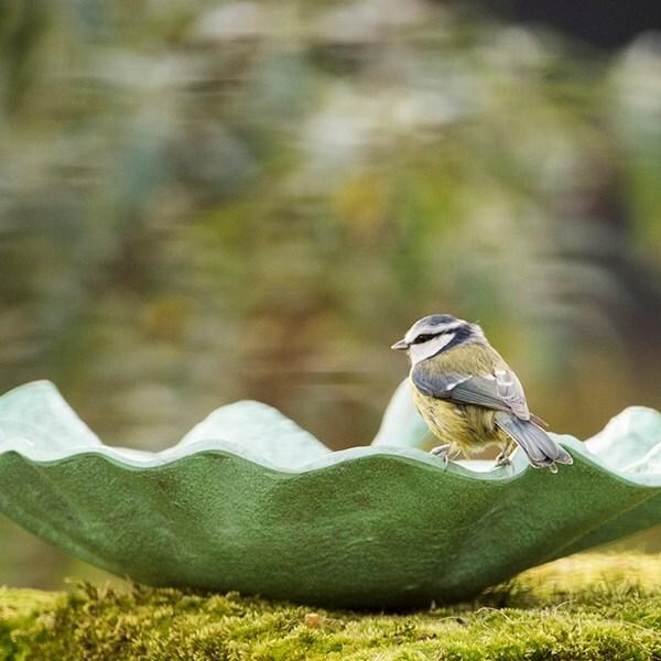 Verdigris leaf bird bath