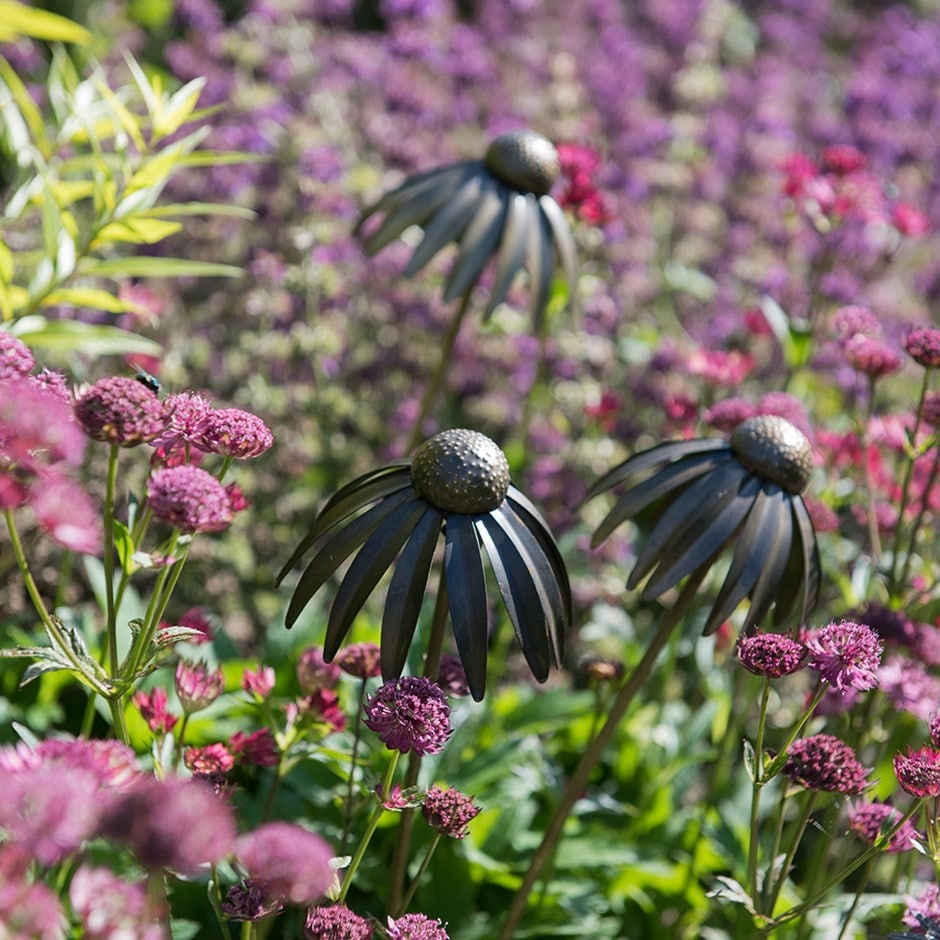 Echinacea plant stake - antique pewter