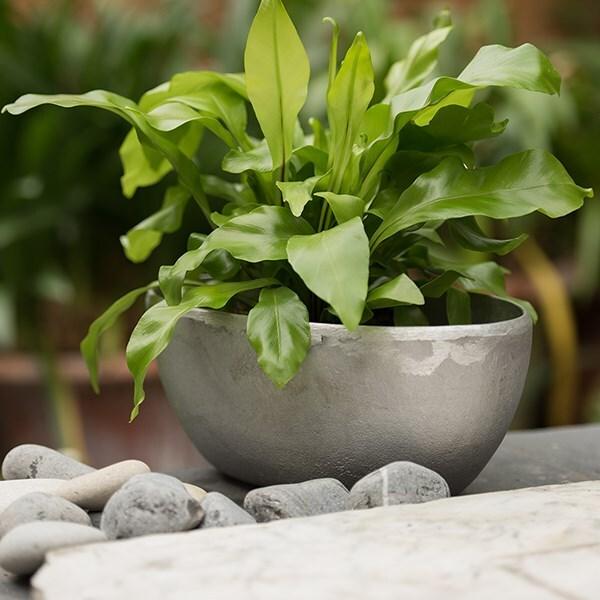 Rough cast aluminium bowl