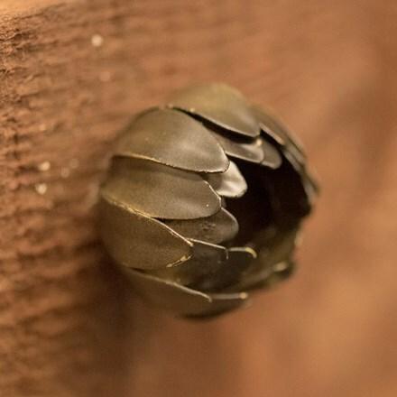 Flower door knob