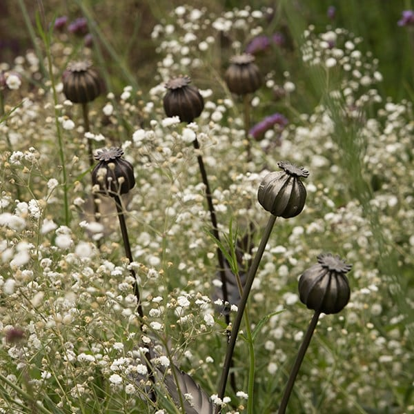 Poppy seed head stake - large seed head