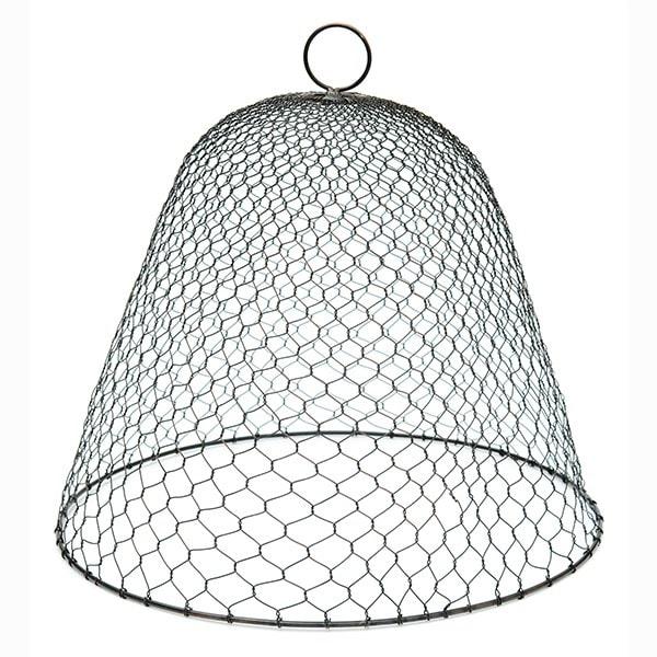 Wire cloche - chicken wire