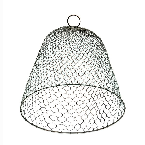 Iron wire cloche - chicken wire