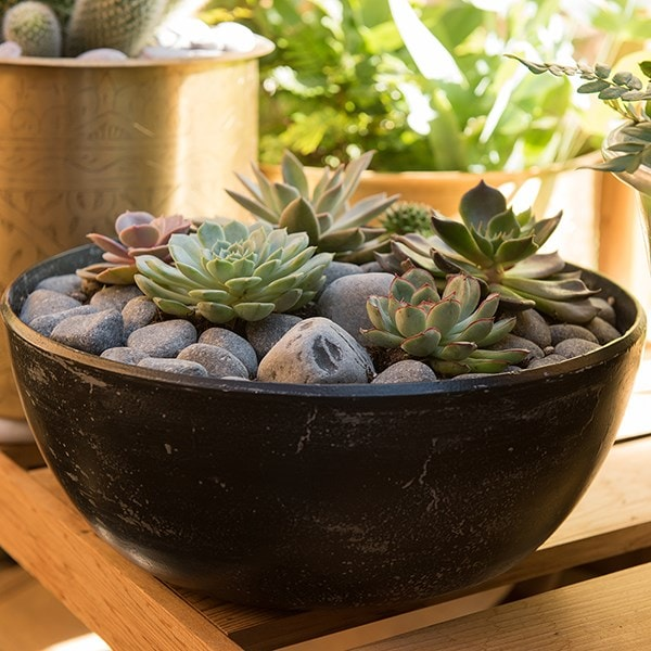 Rough cast aluminium bowl - charcoal black
