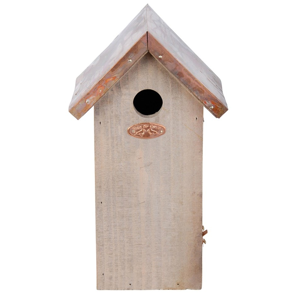 Buy great tit box copper roof delivery by crocus for Buy cupola