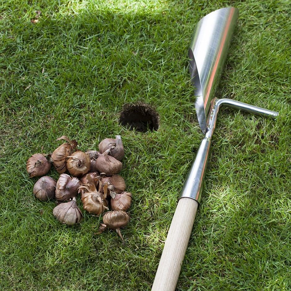 RHS Burgon and Ball long handled bulb planter