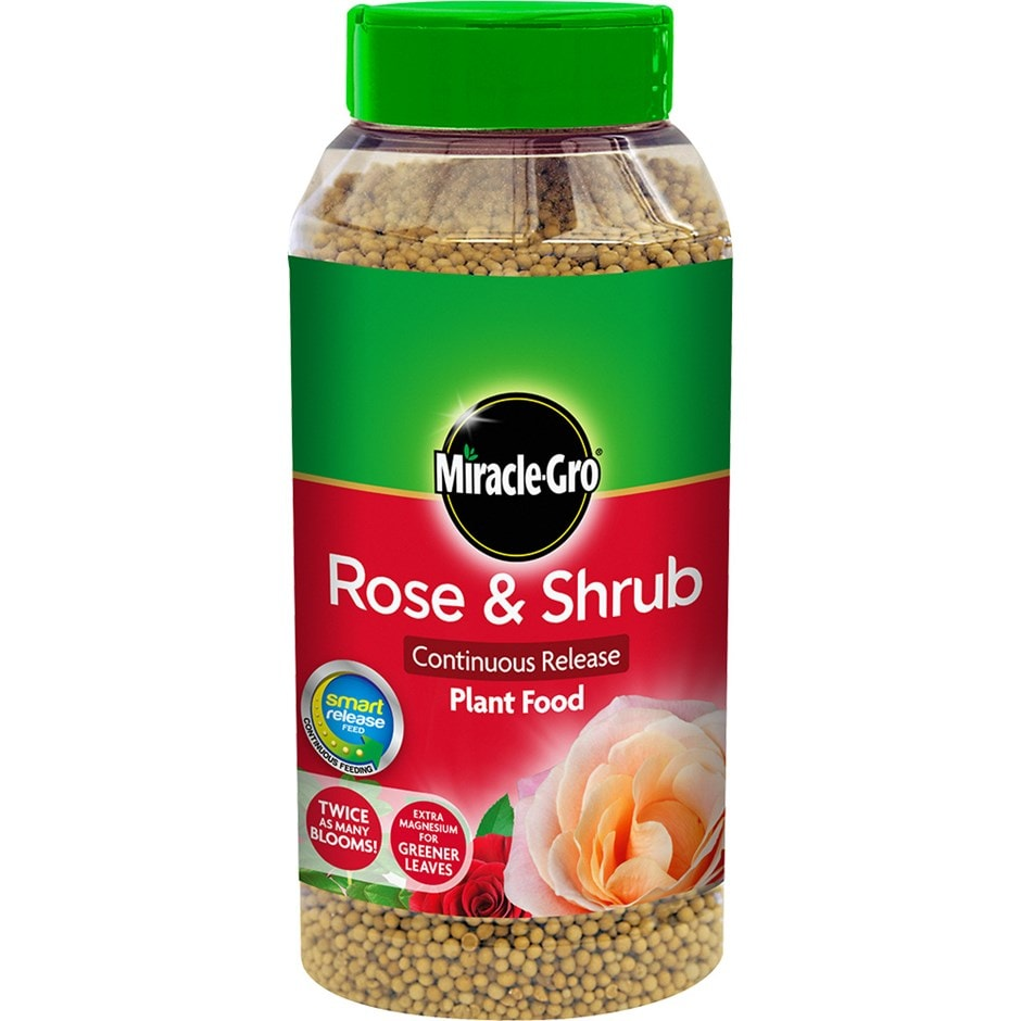 Miracle-Gro rose and shrub continuous plant food