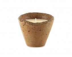 St Eval English hedgerow citronella candle