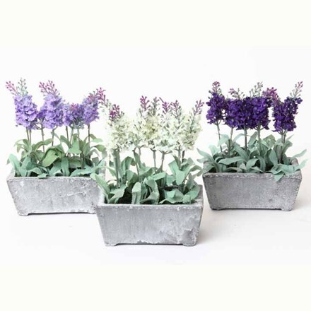 Fabric lavender in ceramic pot - 2 colours