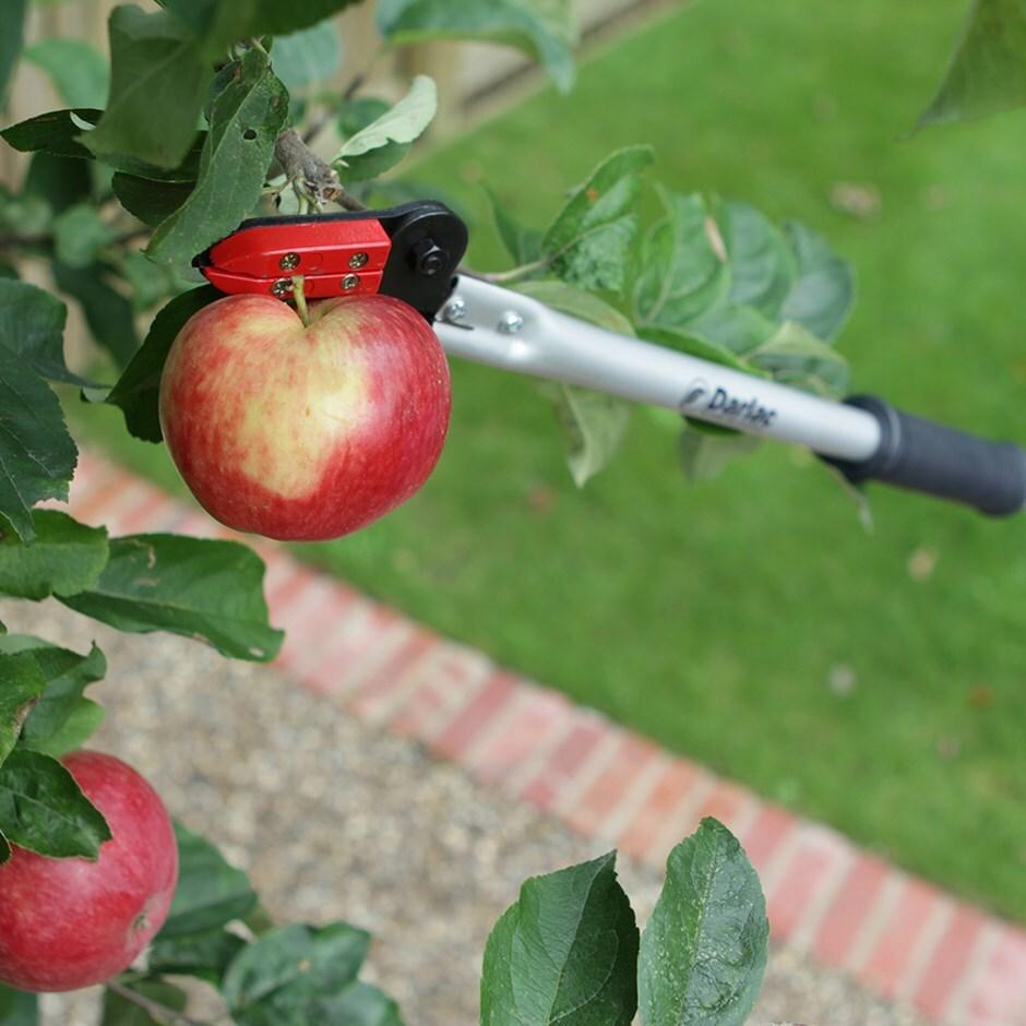 Darlac long handled pruning snapper