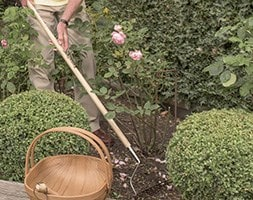Garden Life lightweight soil rake