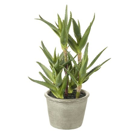 Artificial aloe potted