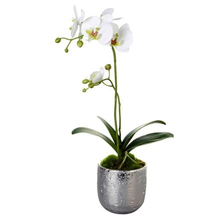 Artificial orchid in silver pot