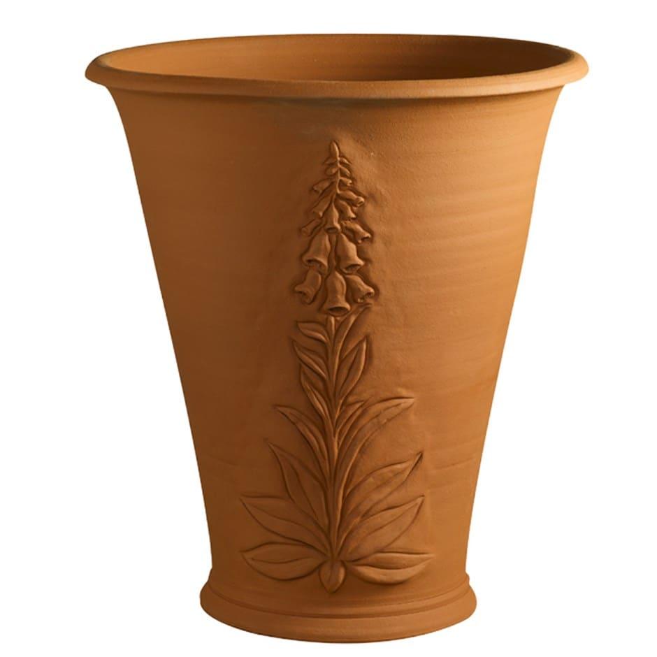 RHS foxglove terracotta flowerpot