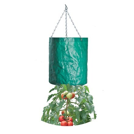 Hanging tomato grow bag