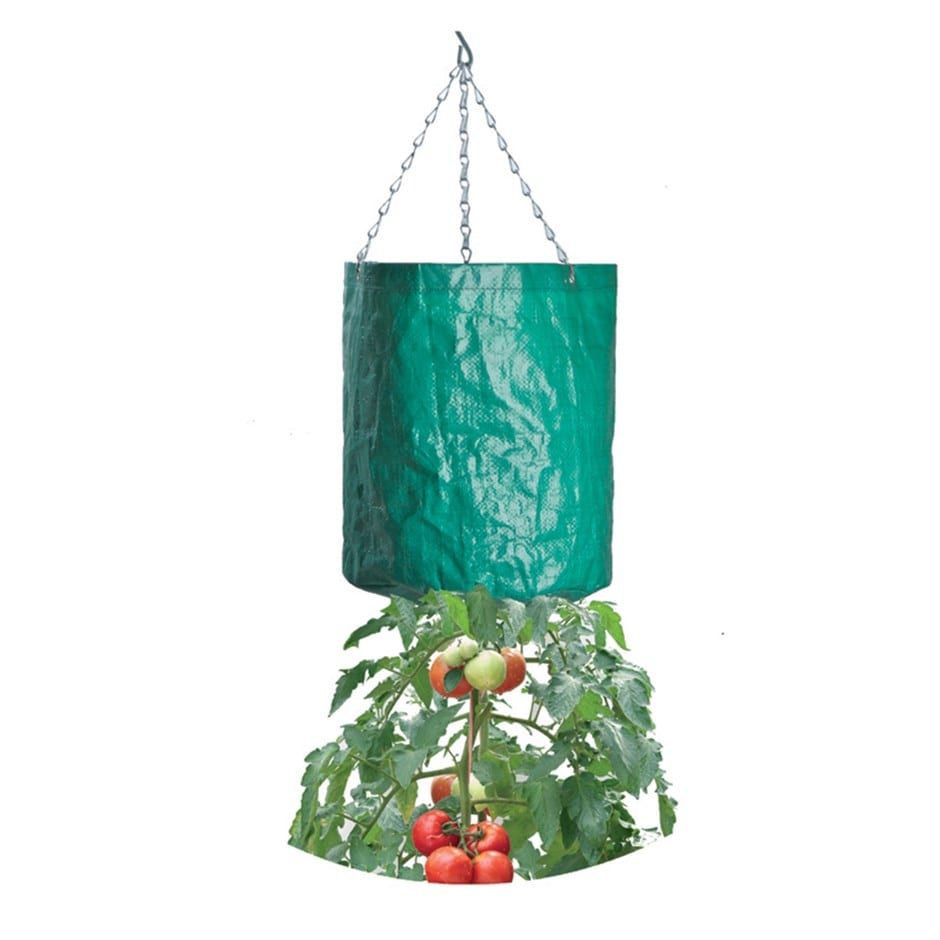 buy hanging tomato grow bag delivery by crocus. Black Bedroom Furniture Sets. Home Design Ideas