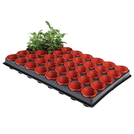 Professional seed and cutting tray with 40 pots