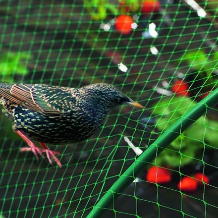 Nortene bird/garden net