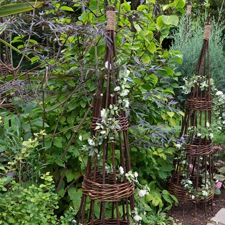 Willow obelisk 2 pack 1.5m