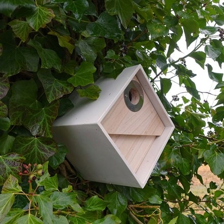 Urban bee box