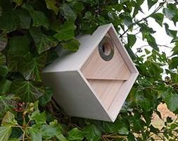 Urban bee box