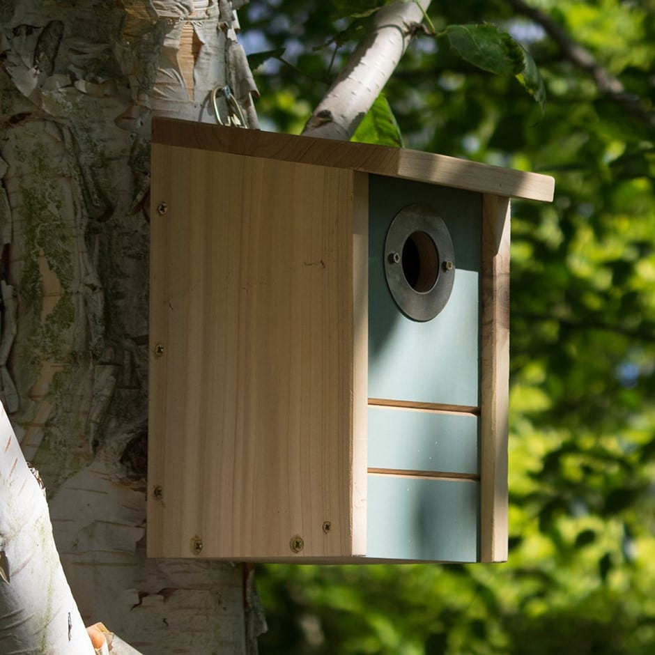 Buy bird biome multi species nest box feeder delivery for Types of birdhouses for birds