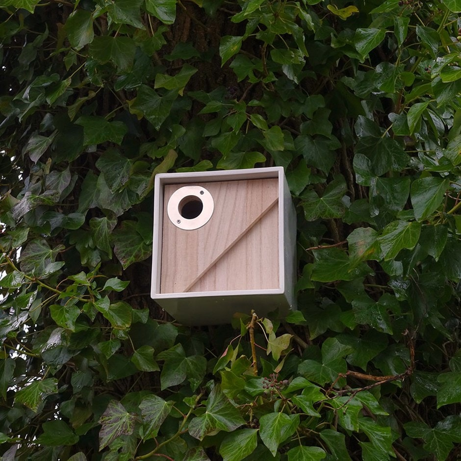 Urban bird box