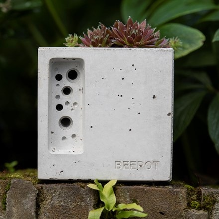 Beepot bee hotel