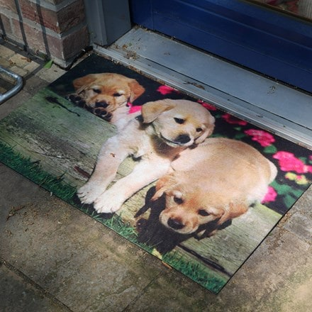 Puppies printed doormat