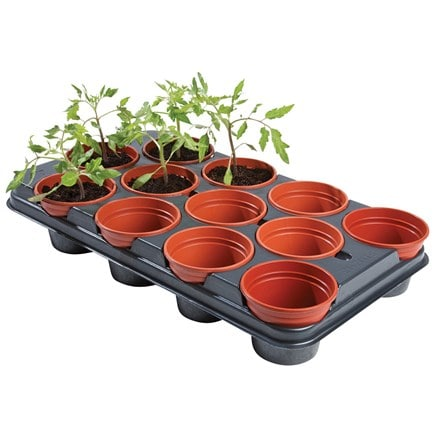 Professional growing tray