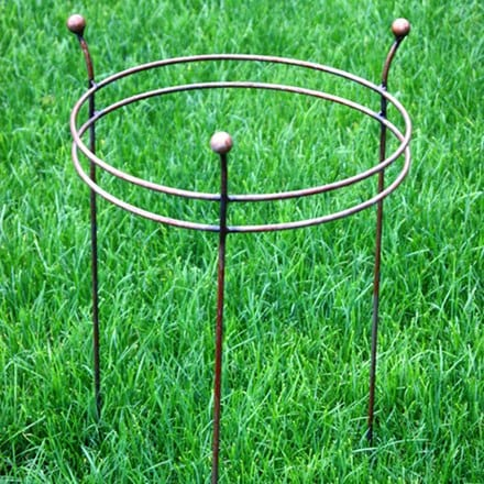 Double ring plant support