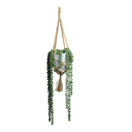 String-of-pearls  faux hanging pot plant