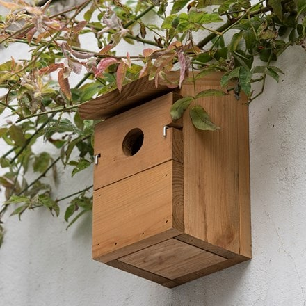 Everyday multi nest box
