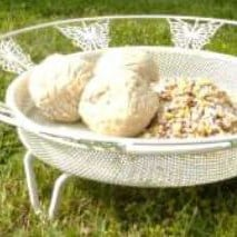French style ground feeder tray